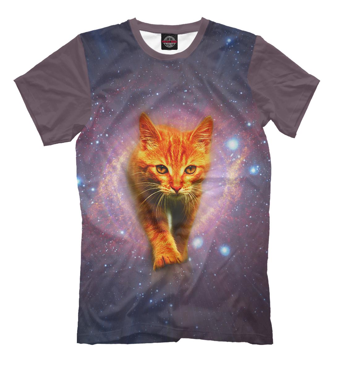 Фото - Звёздный кот звёздный кот