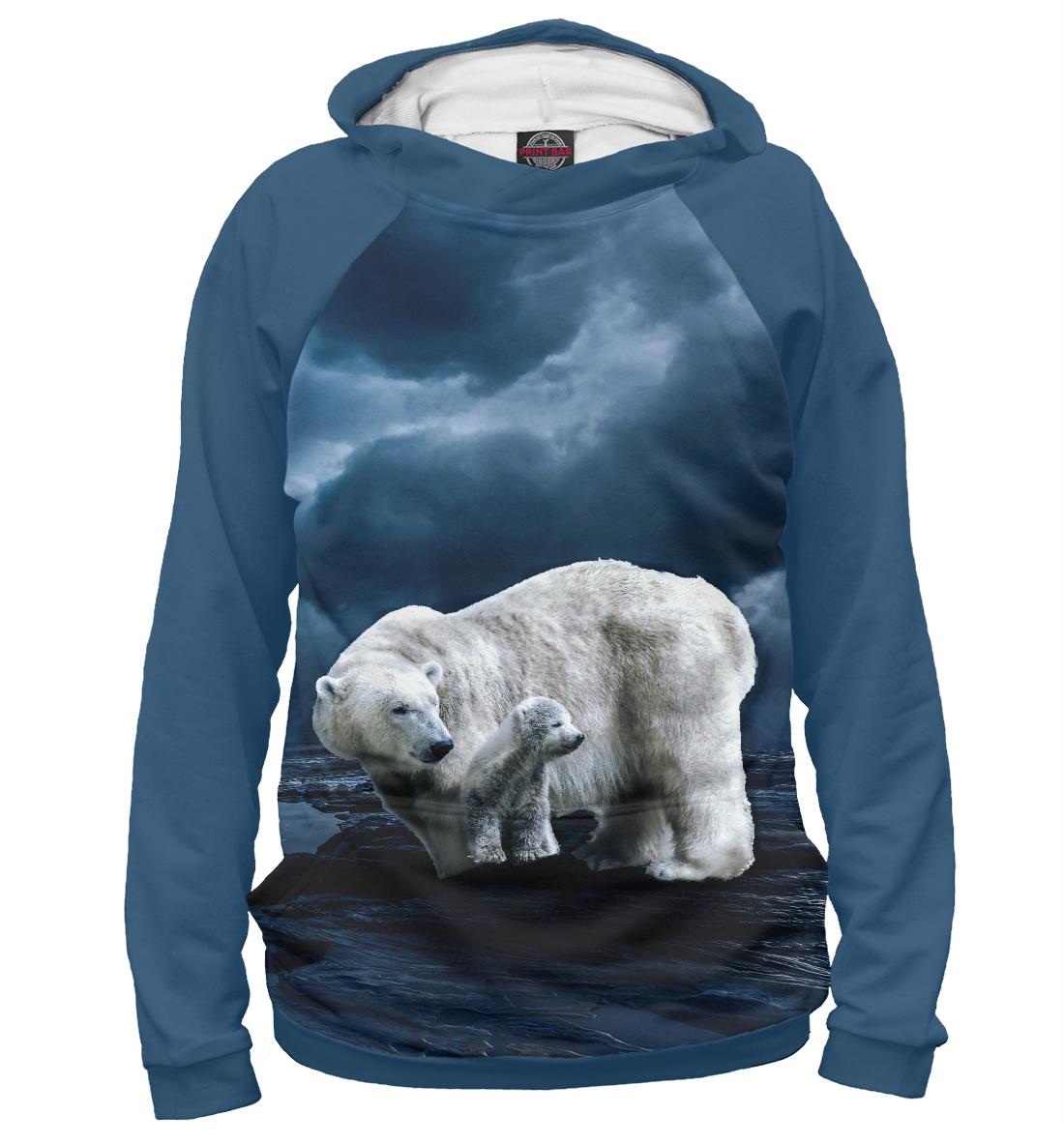 Фото - Полярные медведи полярные медведи