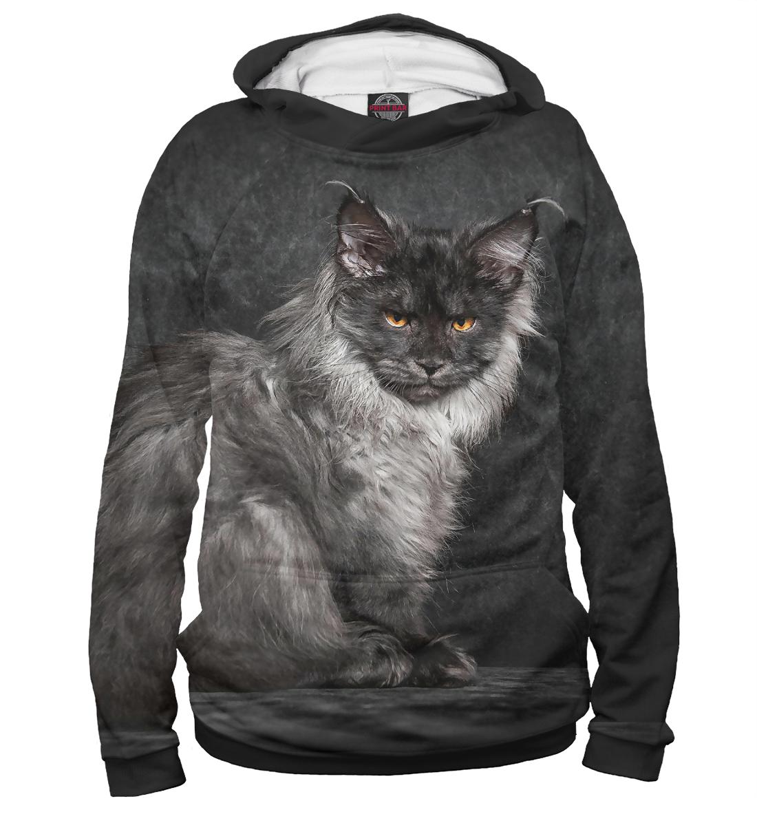 Фото - Серый кот тищенков олег серый и кот