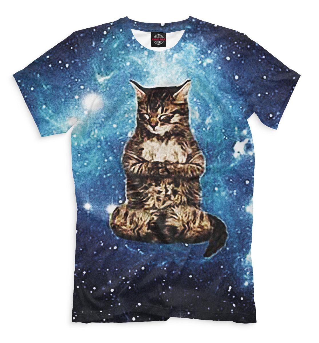 Фото - Кот в космосе кот в космосе
