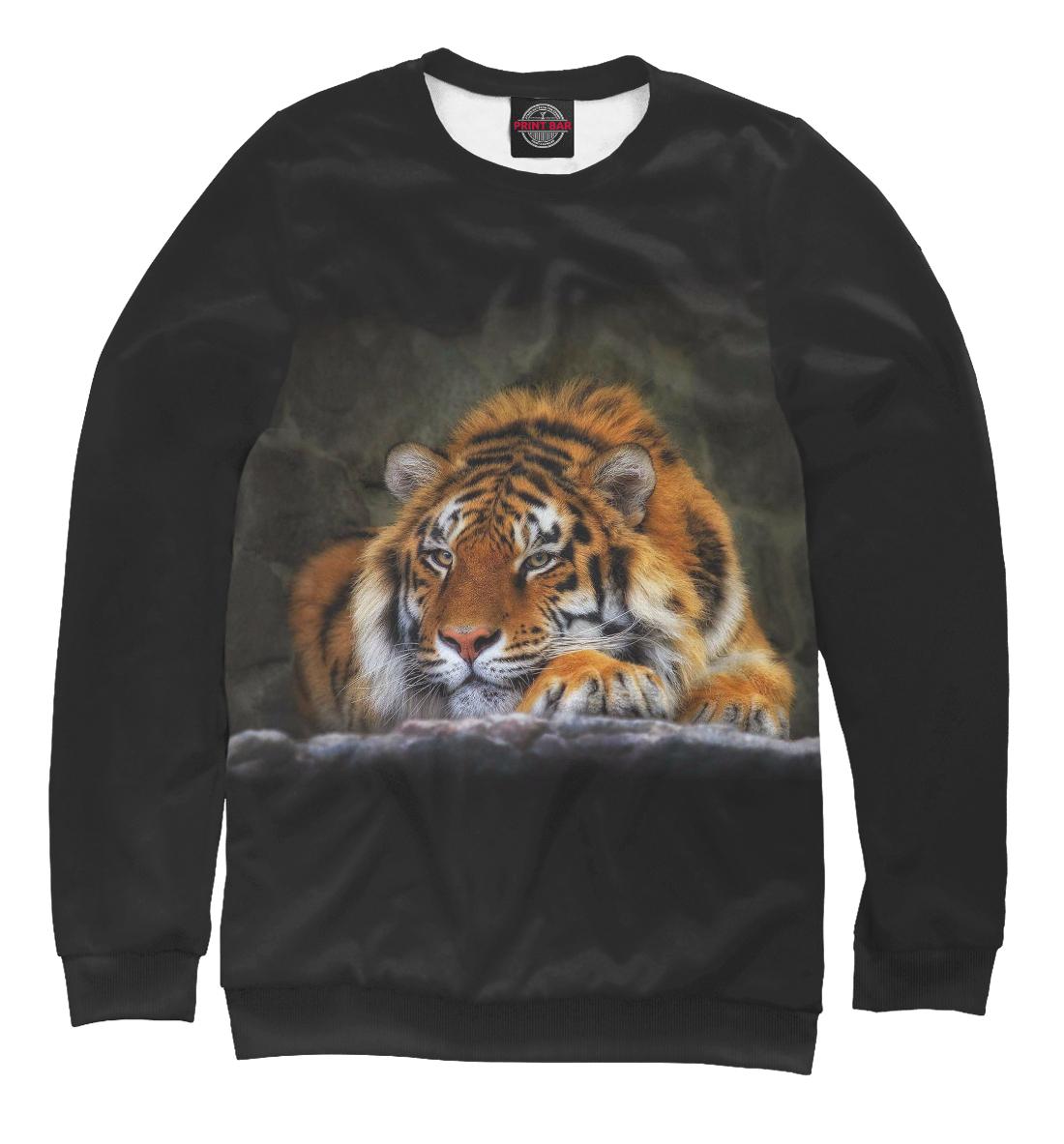 Тигр, Printbar, Свитшоты, HIS-829873-swi-1  - купить со скидкой