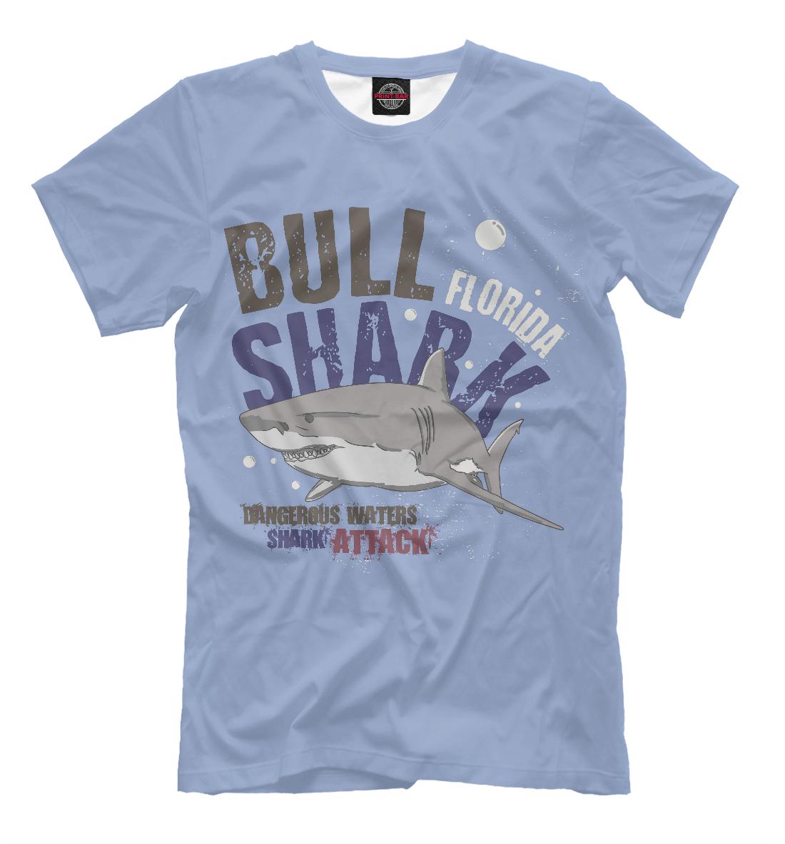 Bull Shark bull shark