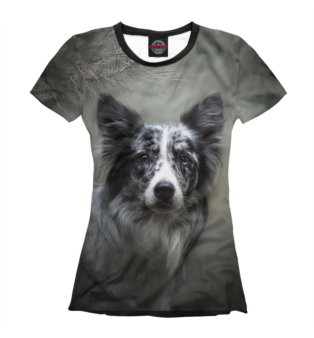 Купить Собака в хвойном лесу, Printbar, Футболки, DOG-577480-fut-1