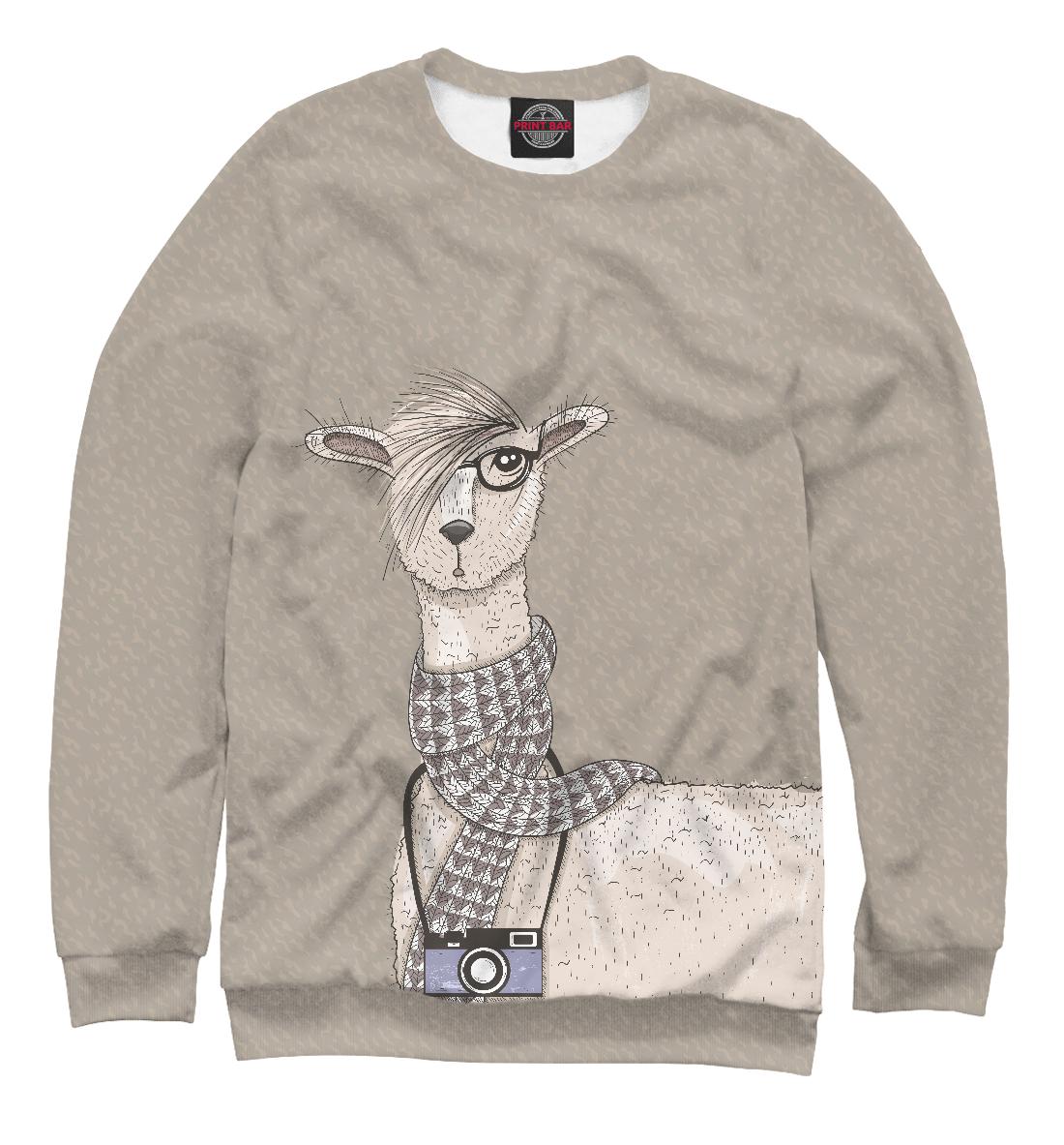 Купить Симпатичная лама с фотоаппаратом, Printbar, Свитшоты, HIP-305696-swi-2