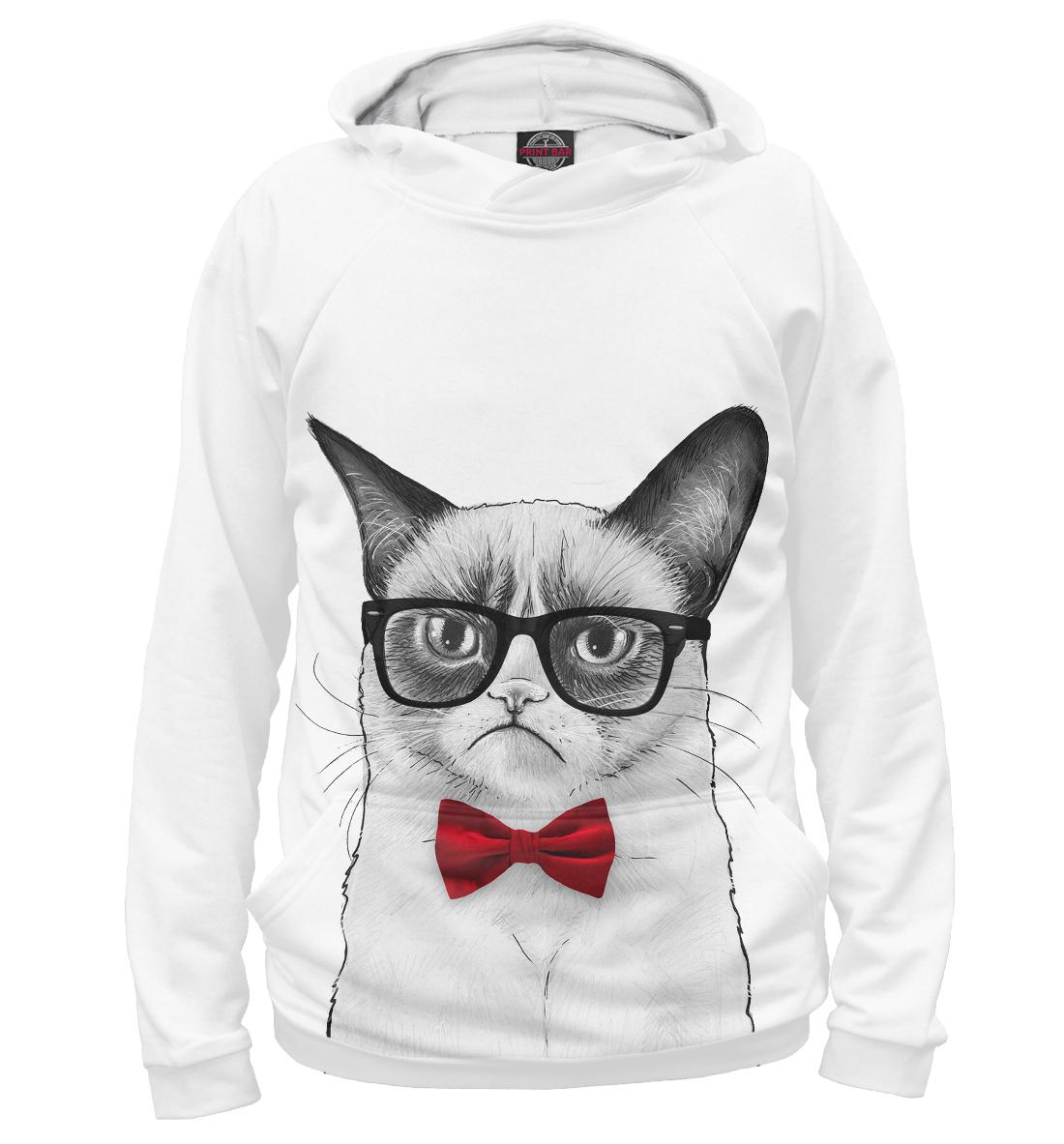 Купить Суровый кот, Printbar, Худи, HIP-770265-hud-1