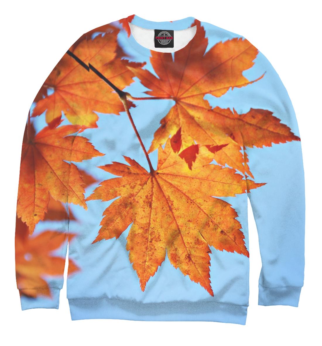 Купить Осенние кленовые листья, Printbar, Свитшоты, PEY-635042-swi-1