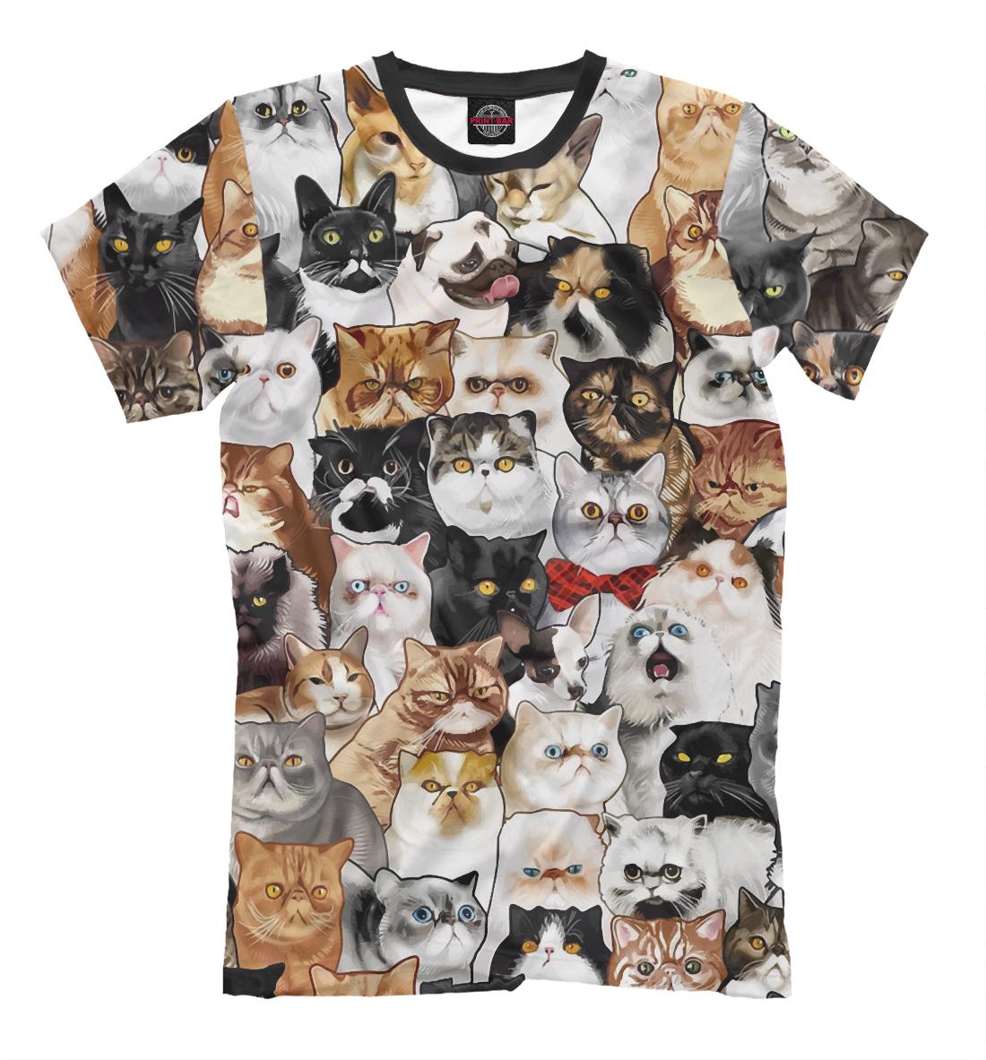 Купить Коты и Мопс, Printbar, Футболки, CAT-669180-fut-2