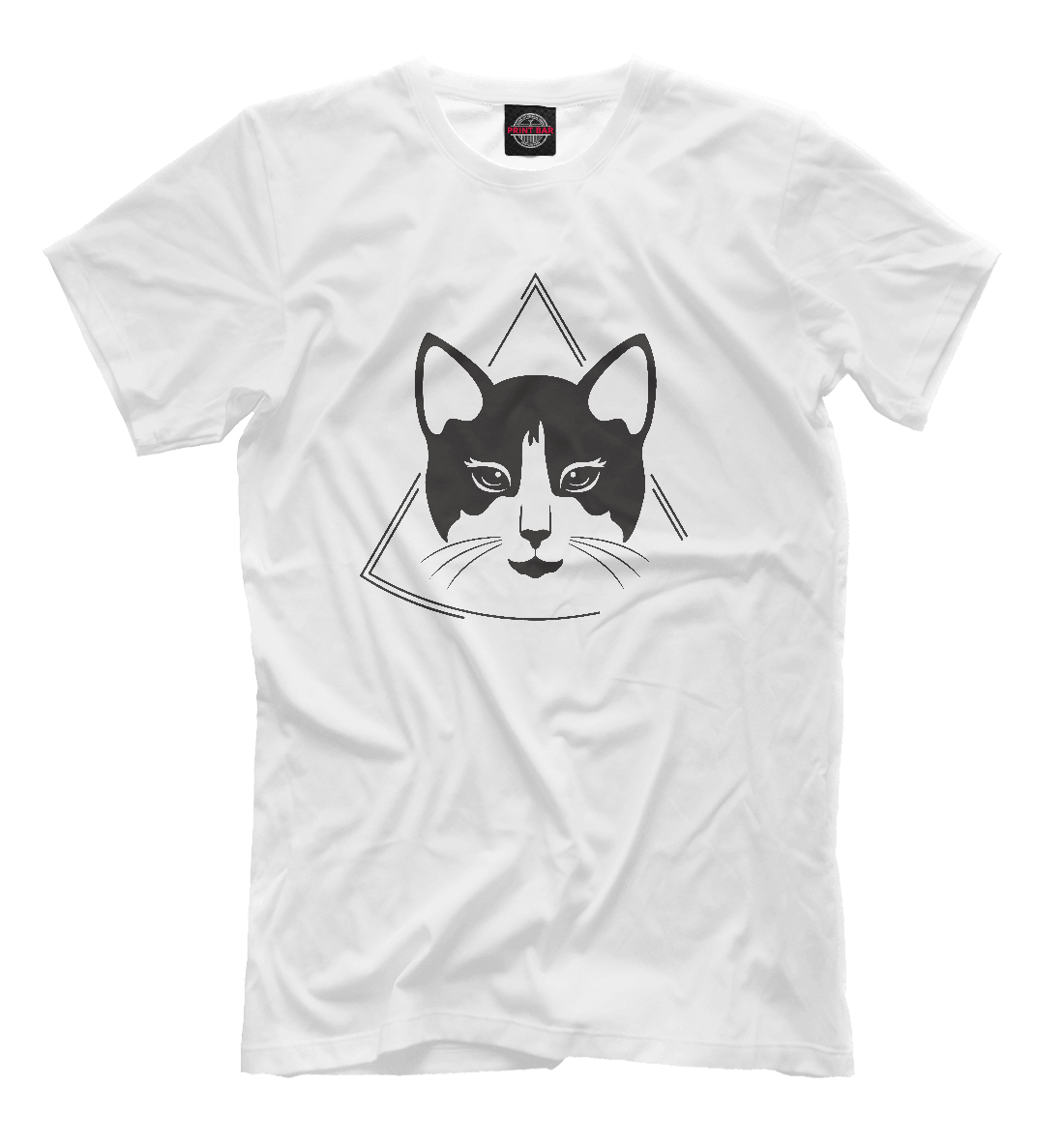 Cat and triangle