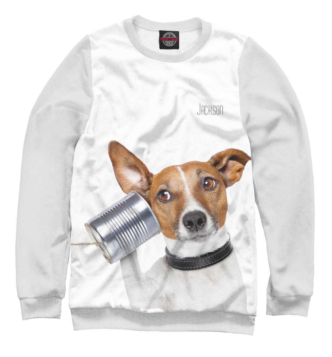 Купить Джек-рассел, Printbar, Свитшоты, DOG-552841-swi-2