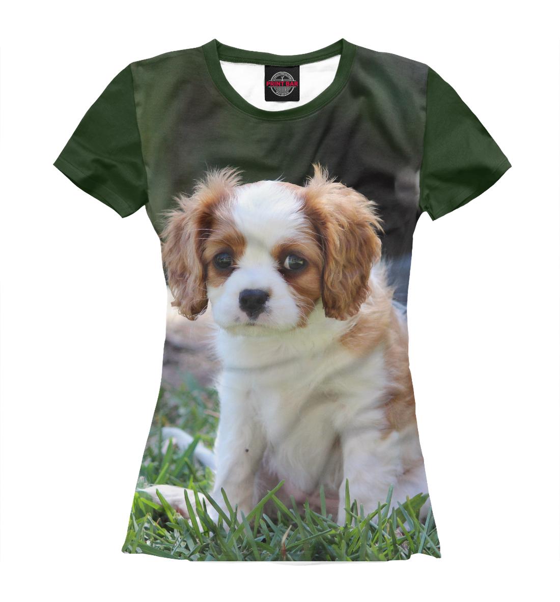 Купить Собака, Printbar, Футболки, DOG-435706-fut-1