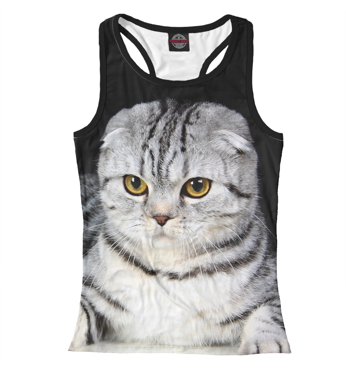 Фото - Серый кот серый кот