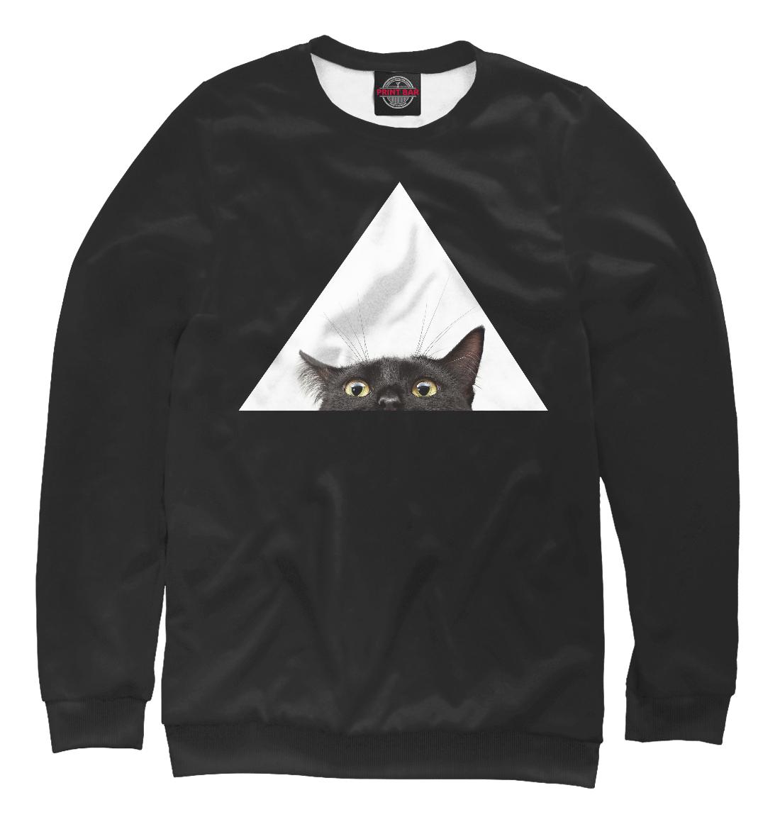 Фото - Кот в треугольнике кот в треугольнике