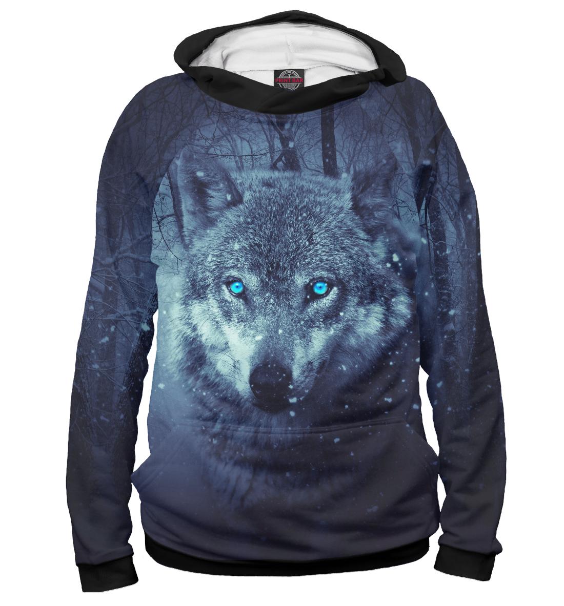 Wolf фото