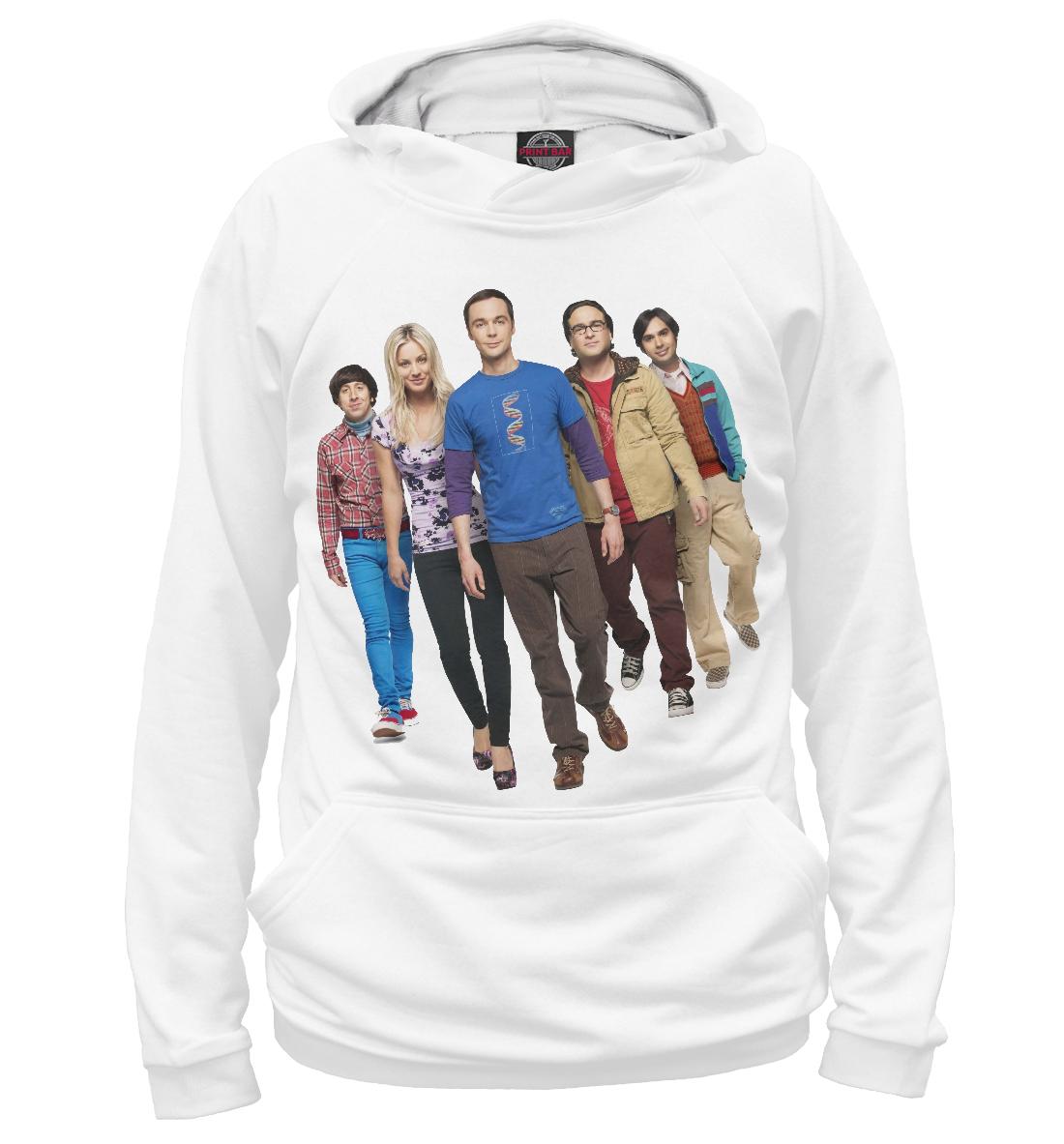 The Big Bang Theory, Printbar, Худи, TEO-422505-hud-2  - купить со скидкой