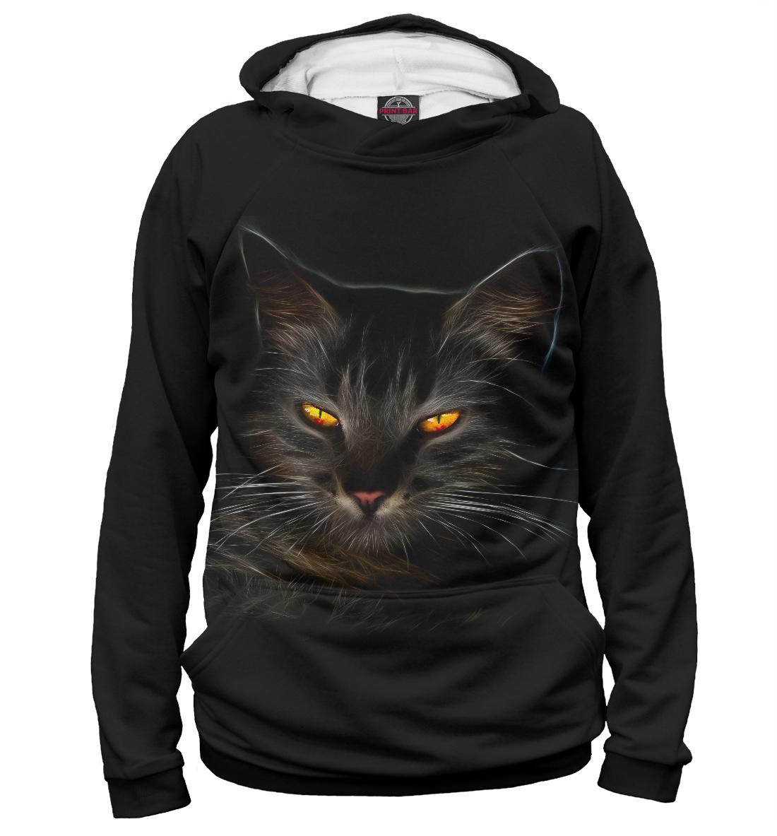 Фото - таинственный кот таинственный кот