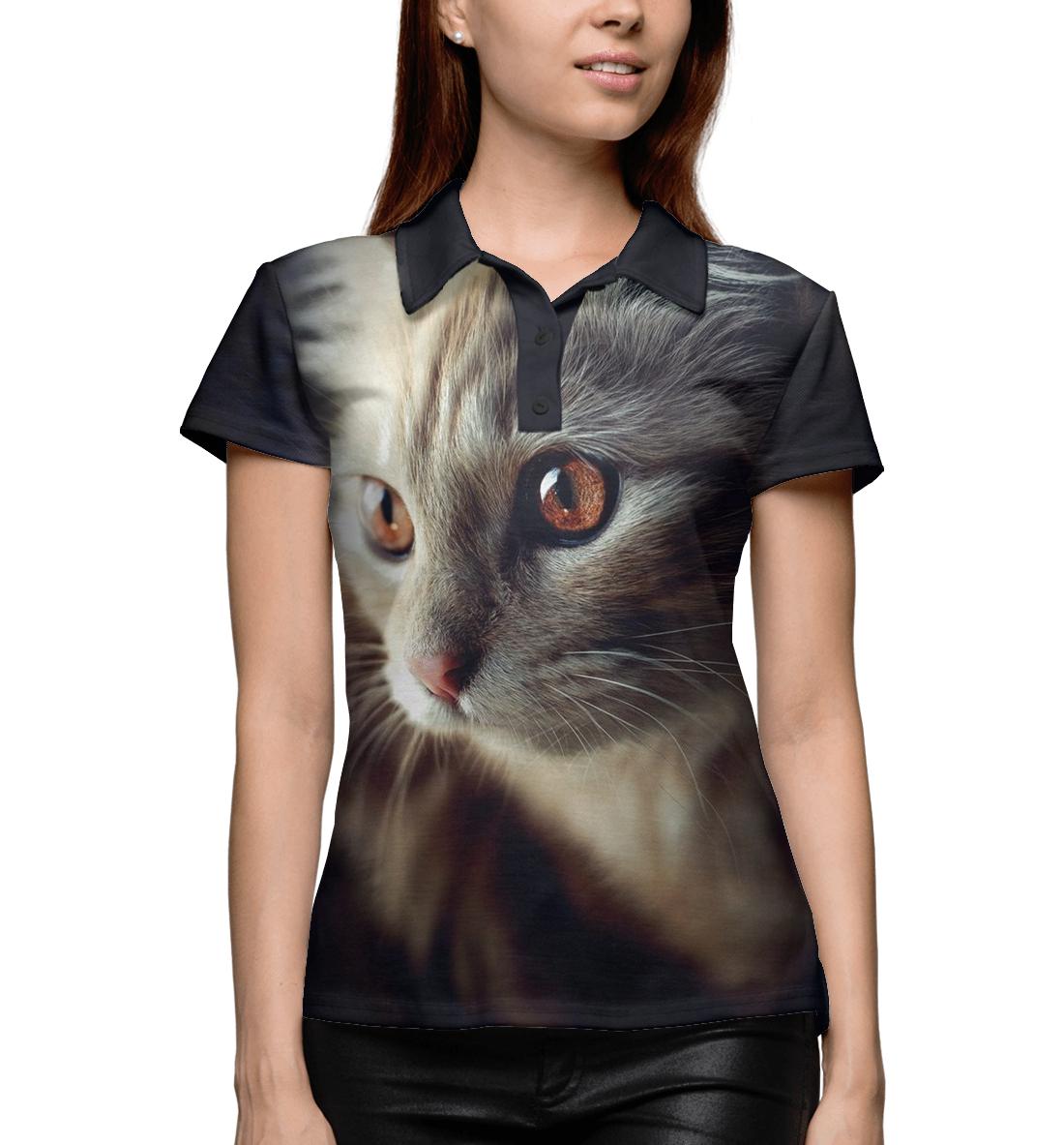Фото - Классный кот классный кот