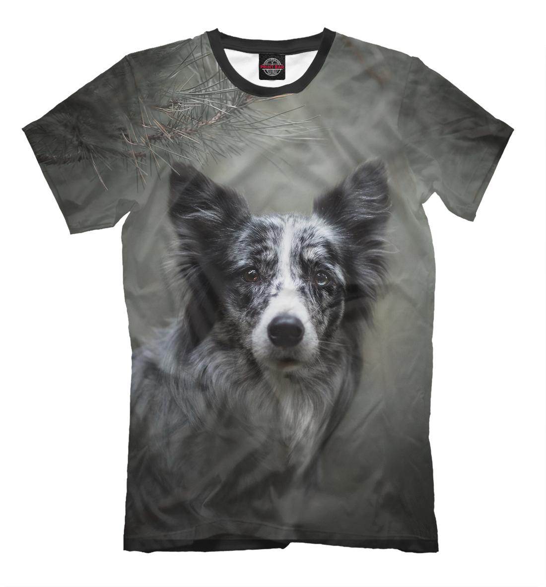 Купить Собака в хвойном лесу, Printbar, Футболки, DOG-577480-fut-2