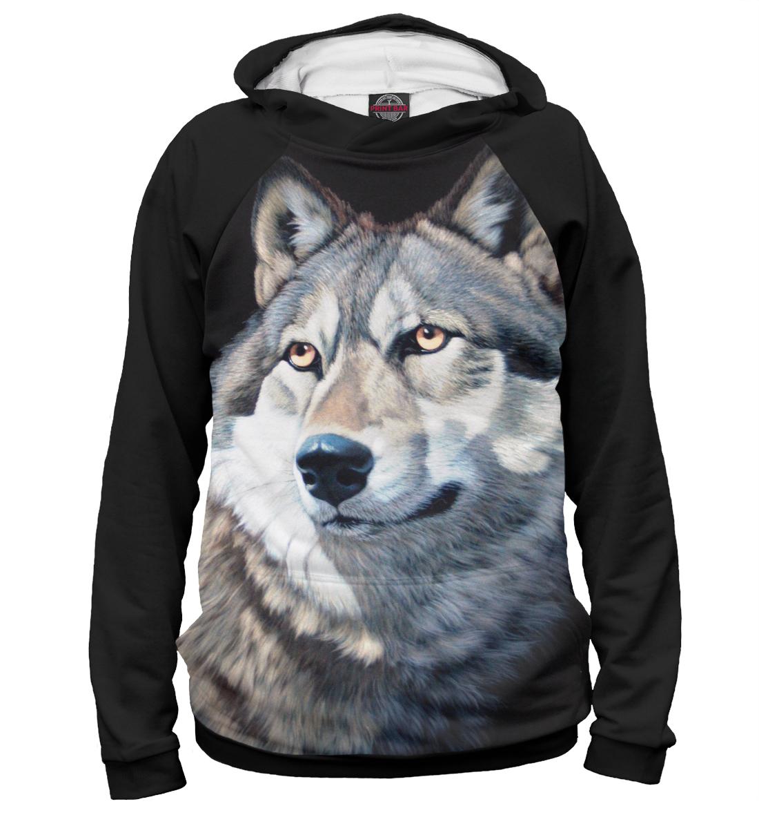 Купить Волк Вожак, Printbar, Худи, VLF-372603-hud-2