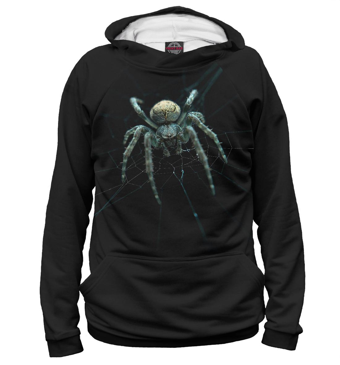 Купить Мистический паук, Printbar, Худи, APD-883010-hud-2