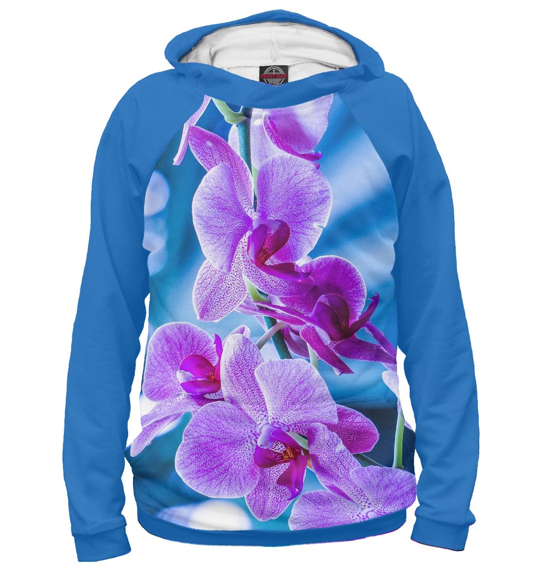 Купить Орхидея, Printbar, Худи, CVE-398624-hud-2