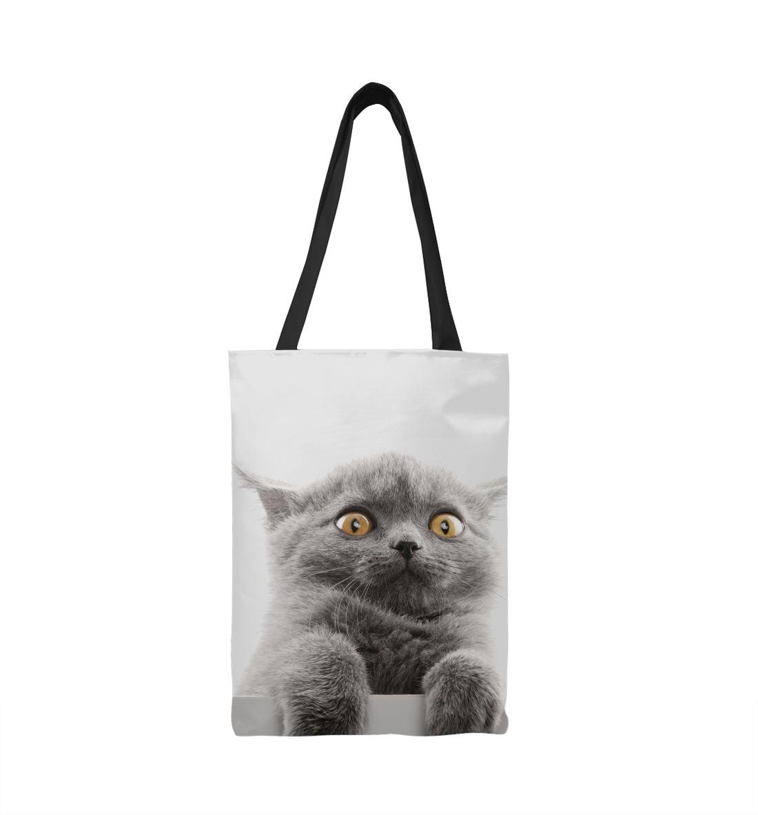 Фото - Испуганный кот испуганный кот