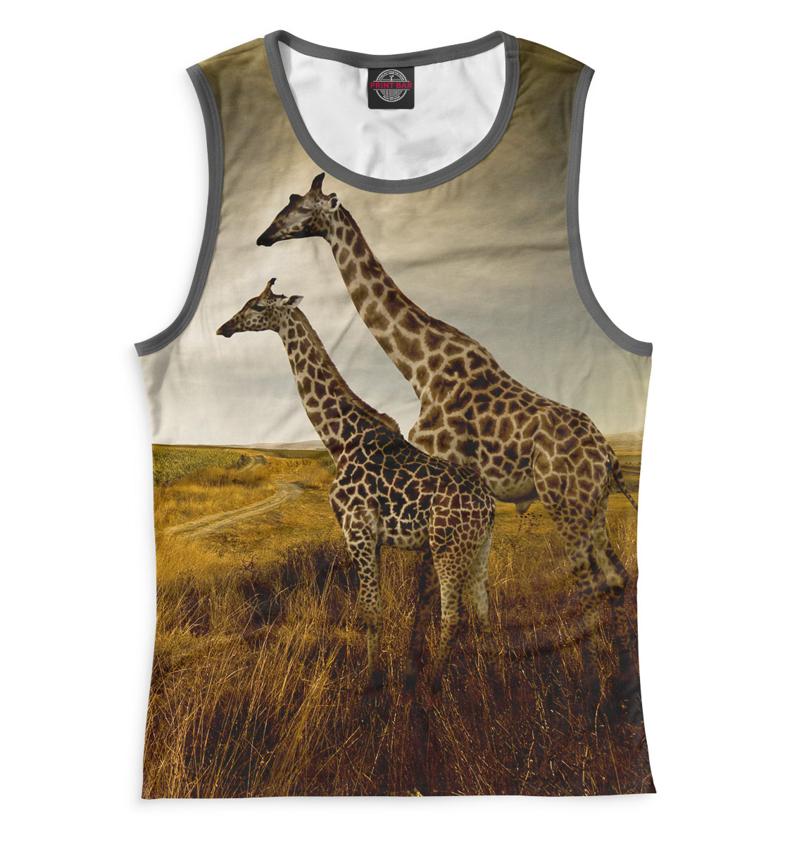 защита на прогулке Жирафы на прогулке