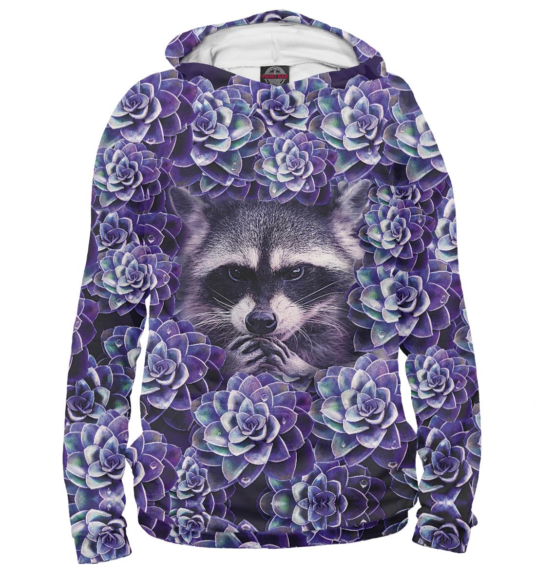 Купить Енот в цветах, Printbar, Худи, ENT-961800-hud-2