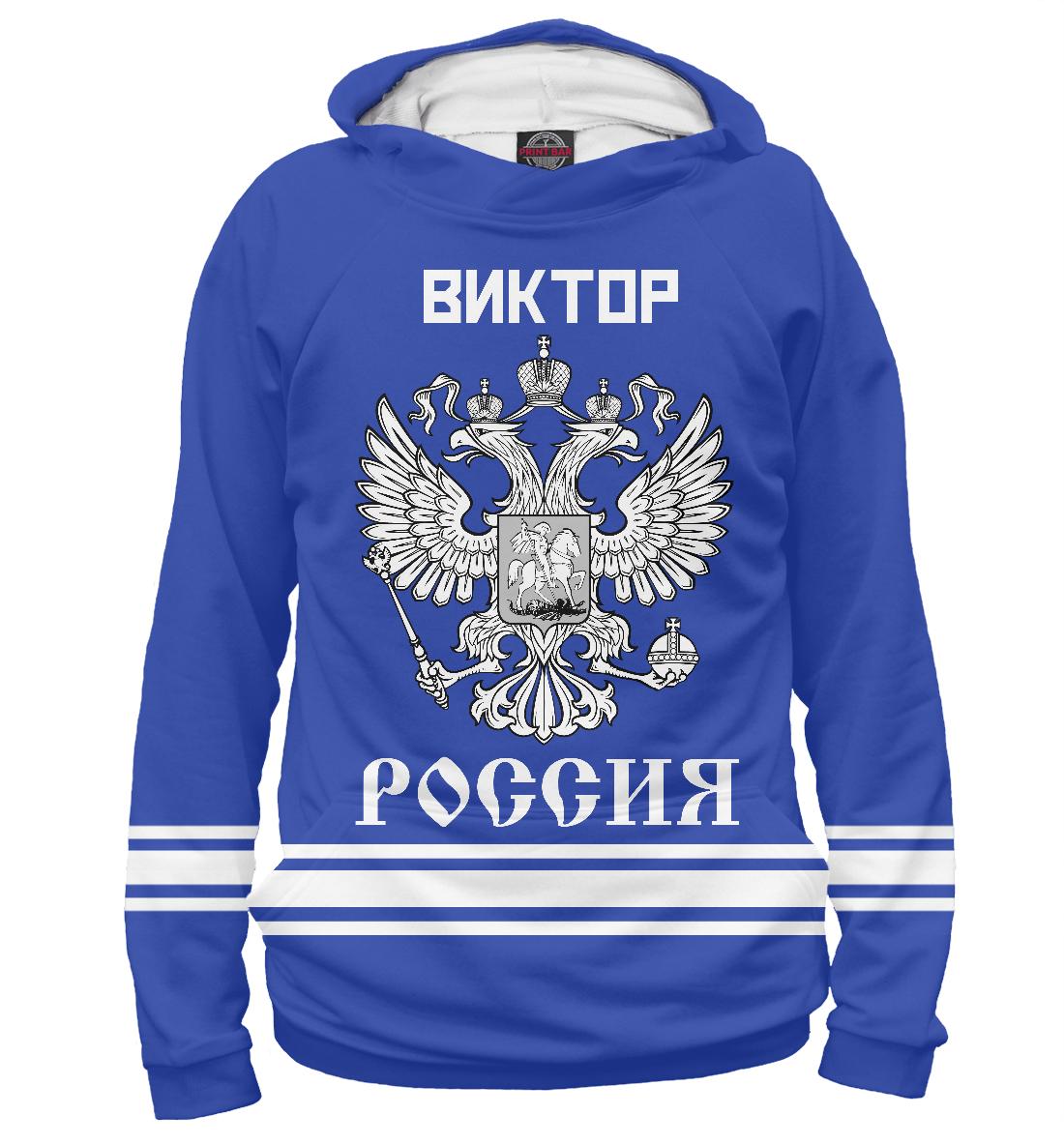 Купить ВИКТОР sport russia collection, Printbar, Худи, VKT-521173-hud-1
