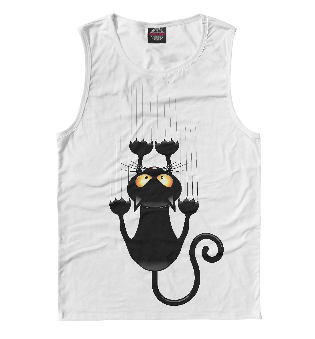 Фото - Чёрный кот чёрный кот