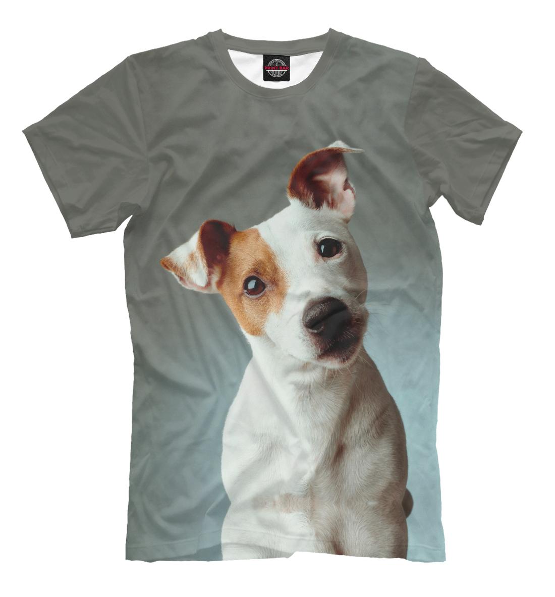Фото - Jack Russell Terrier muriel p lee scottish terrier