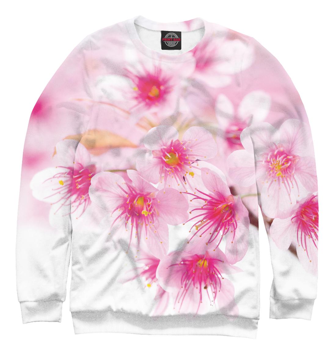 Купить Вишнёвый цвет, Printbar, Свитшоты, CVE-219744-swi-2