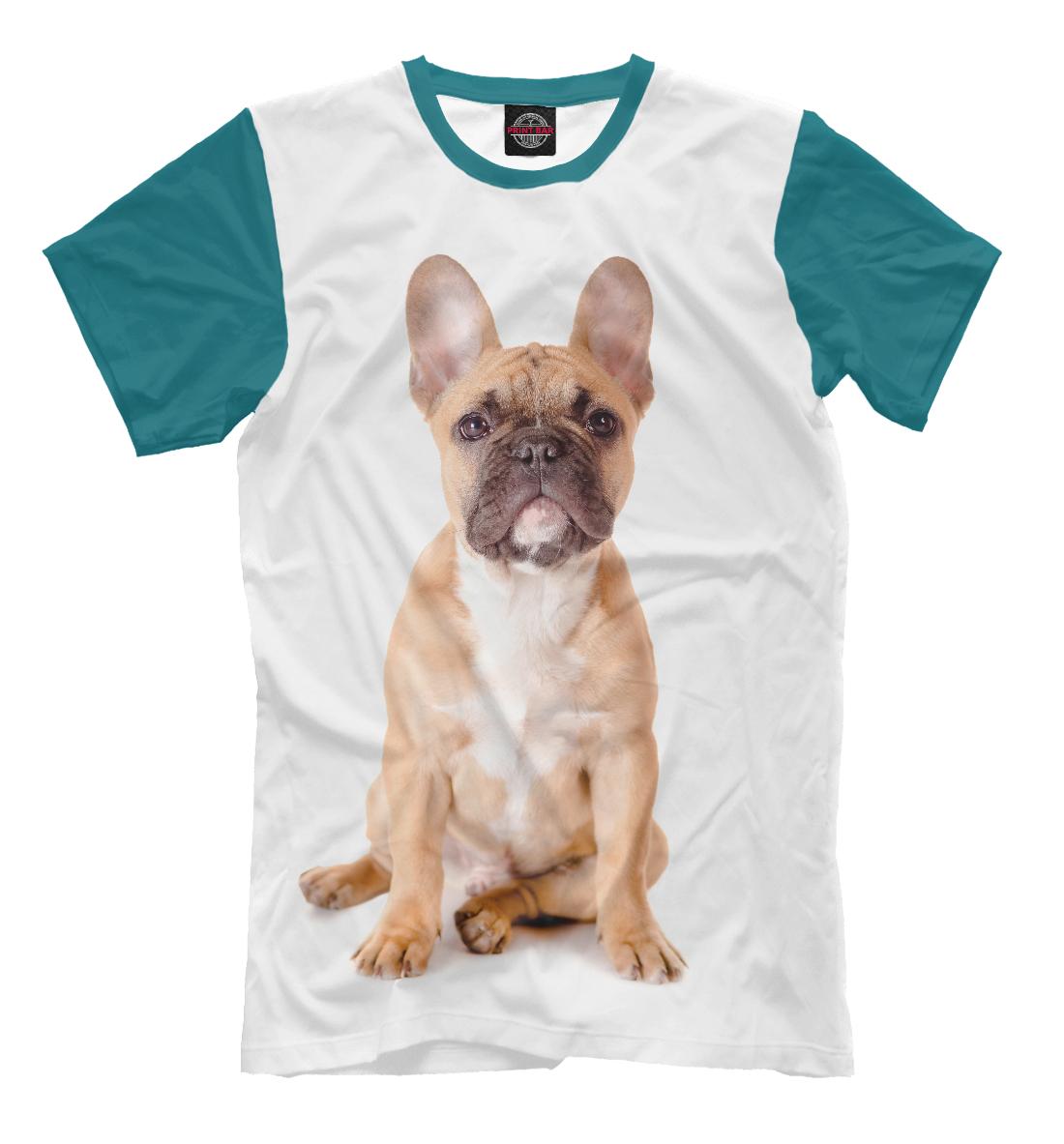 Купить Бульдог, Printbar, Футболки, DOG-596235-fut-2