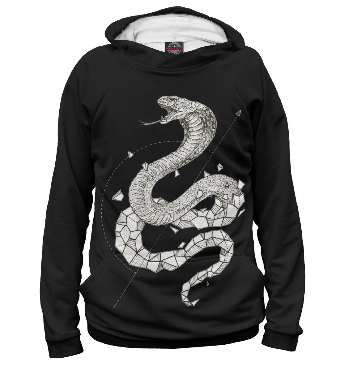 Купить Geometric dark snake, Printbar, Худи, APD-154964-hud-1