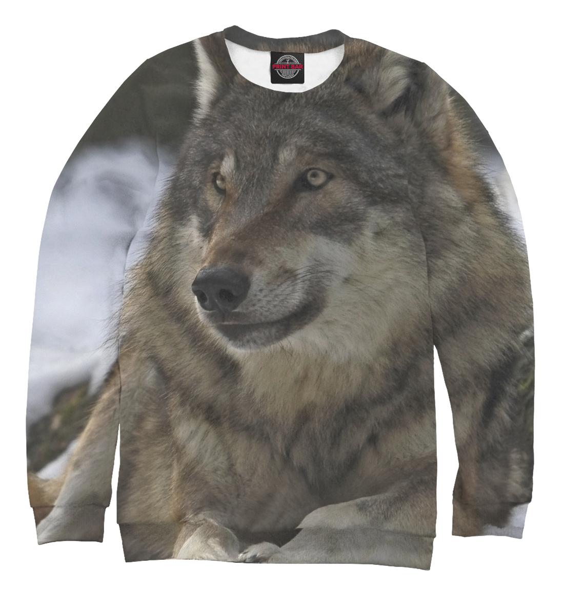 Купить Волк зимой, Printbar, Свитшоты, VLF-183314-swi-2