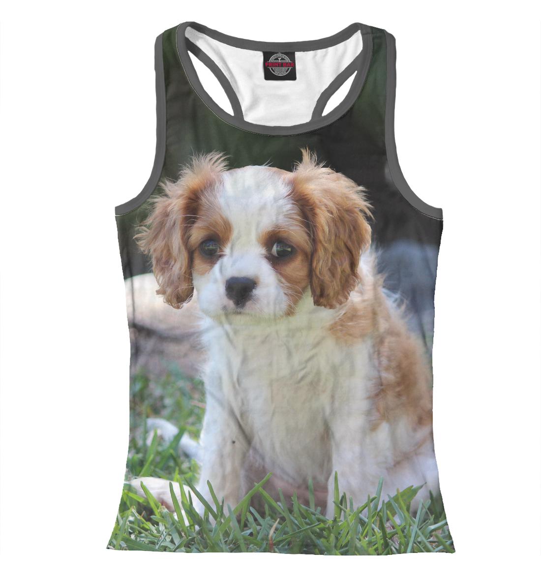 Купить Собака, Printbar, Майки борцовки, DOG-435706-mayb-1