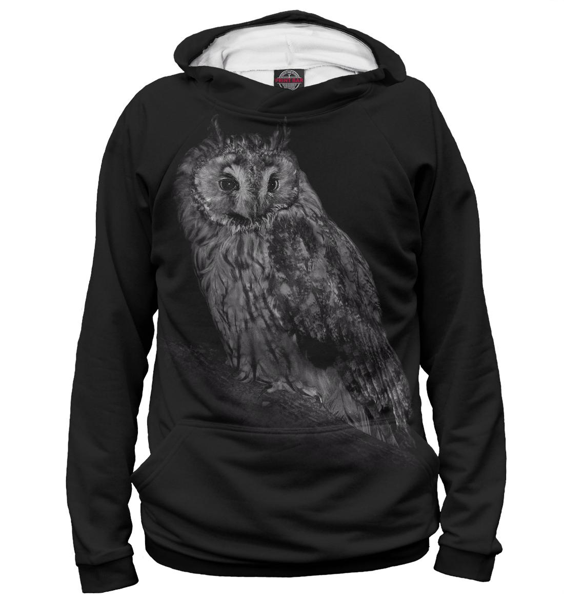 Купить Сова, Printbar, Худи, OWL-854428-hud-2