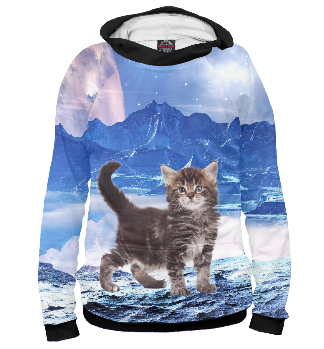 Купить Котенок по имени Амстронг, Printbar, Худи, CAT-261748-hud-2