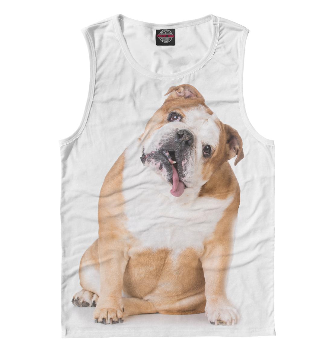 Купить Бульдог, Printbar, Майки, DOG-127602-may-2