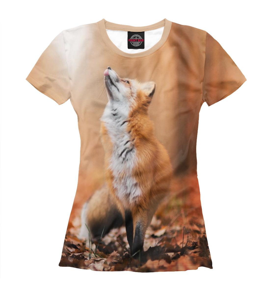 Купить Лиса в лесу, Printbar, Футболки, FOX-400754-fut-1
