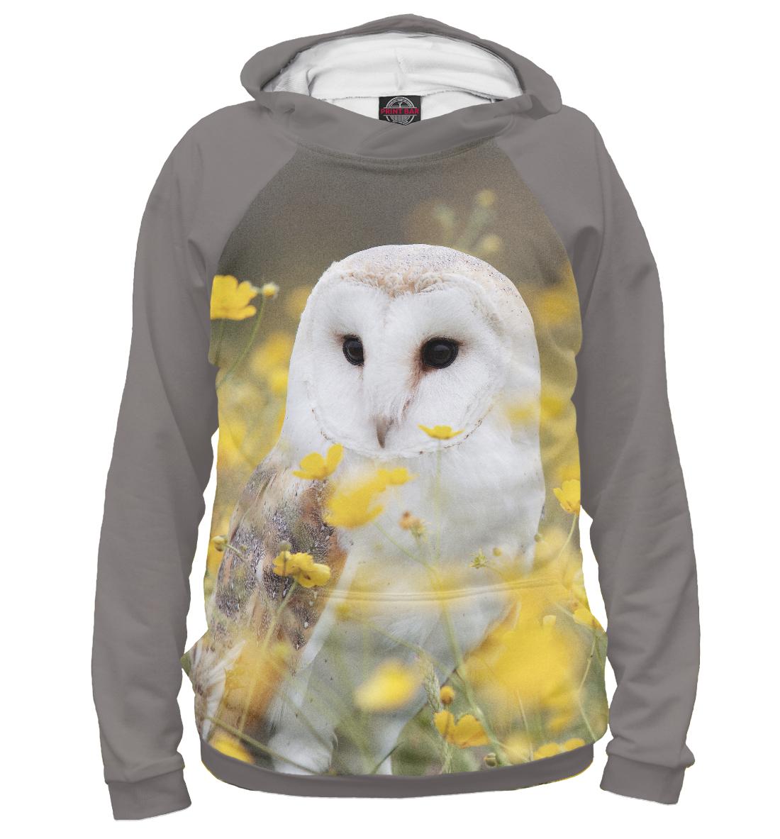 Купить Сова, Printbar, Худи, OWL-993004-hud-2