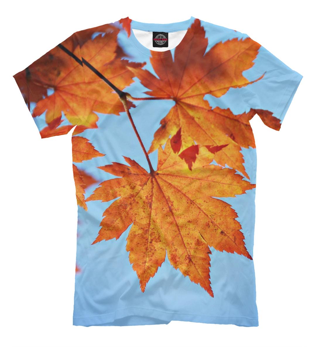 Купить Осенние кленовые листья, Printbar, Футболки, PEY-635042-fut-2