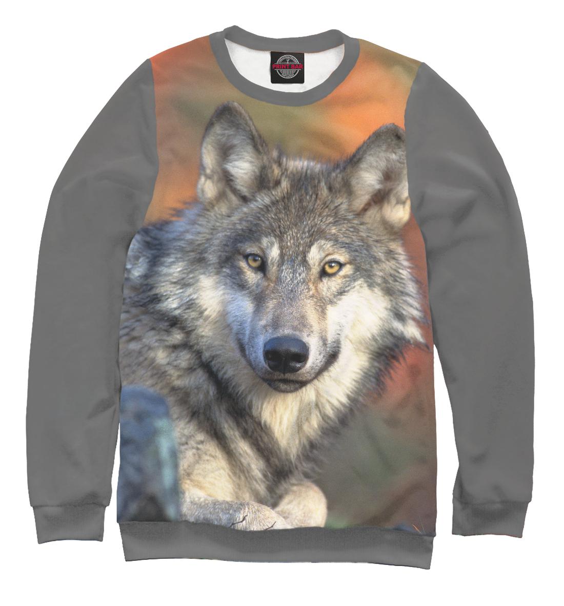 Купить Добрый Волк, Printbar, Свитшоты, VLF-266495-swi-1