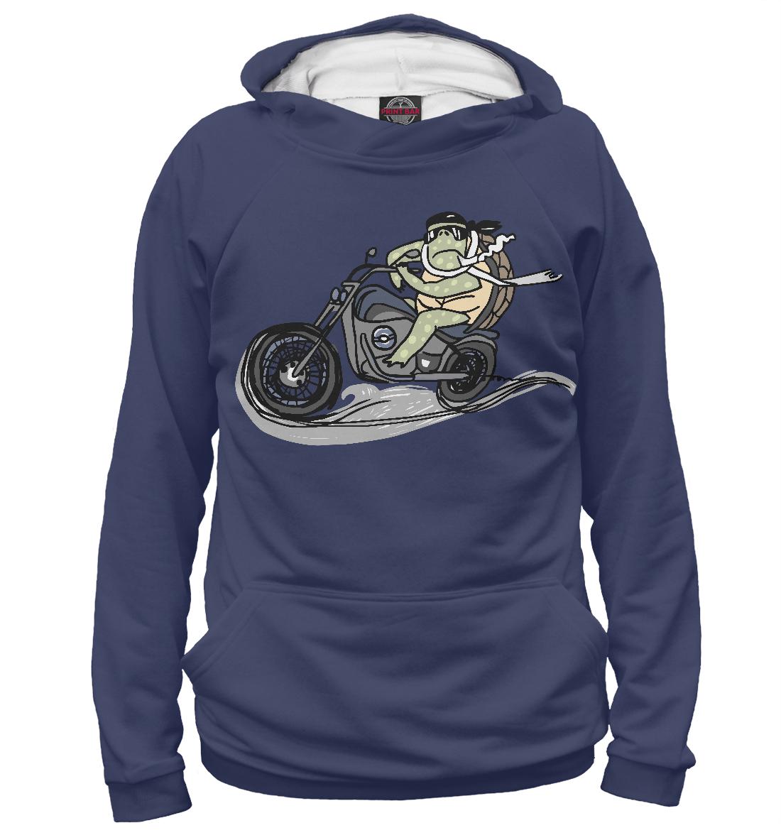 Купить Черепаха на мотоцикле, Printbar, Худи, MTR-268832-hud-1