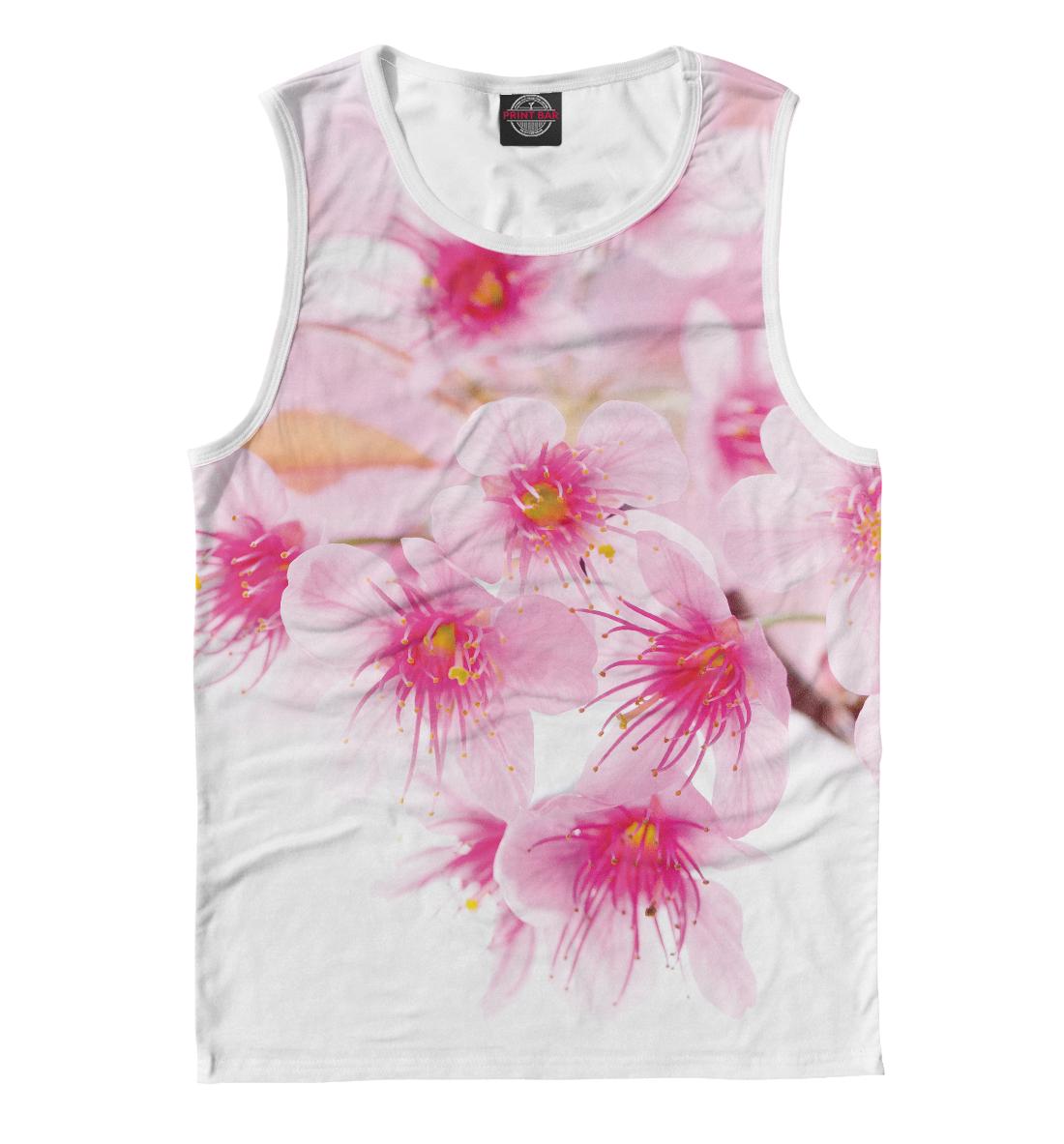 Купить Вишнёвый цвет, Printbar, Майки, CVE-219744-may-2