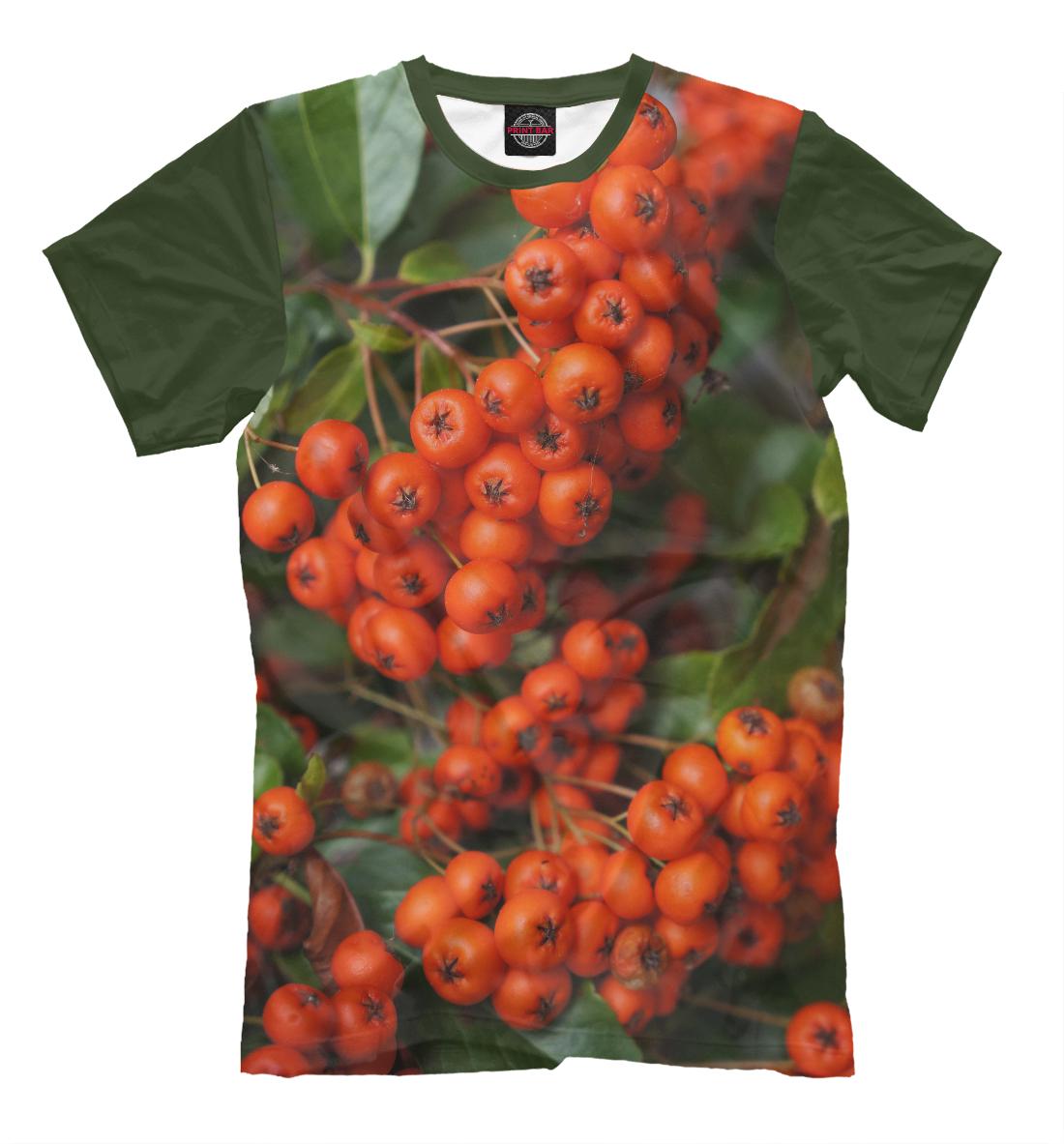 Купить Мужская футболка Рябина MAC-348749-fut-2