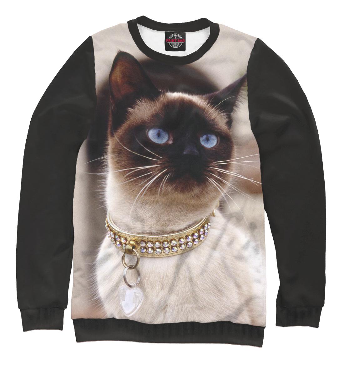картинки кошек на одежде как всех