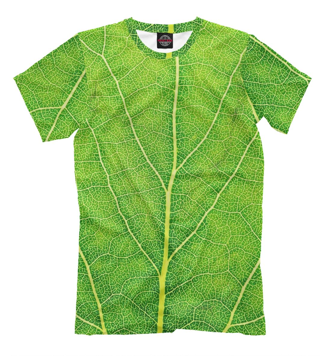 Купить Мужская футболка Лист MAC-486101-fut-2