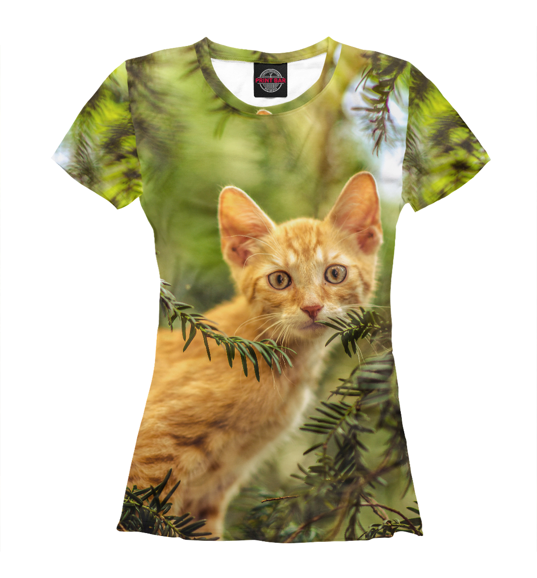 хлопчатобумажная панама фото футболок женских с кошками говорить липоидной дуге
