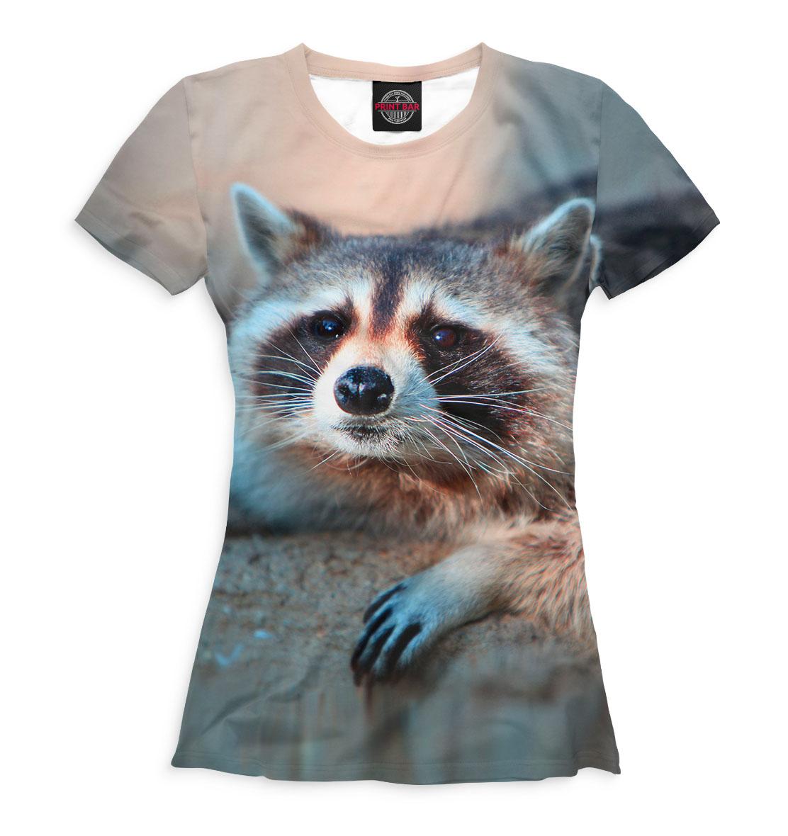 Енот картинка на футболку