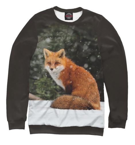 Купить Свитшот для мальчиков Лиса FOX-855439-swi-2